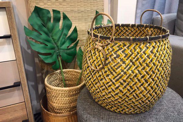 Pot' Yellow กระถางต้นไม้ จากธรรมชาติ